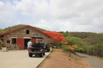 m_Culebra Museum and Golf Cart