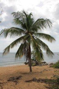 m_Deserted beach east end