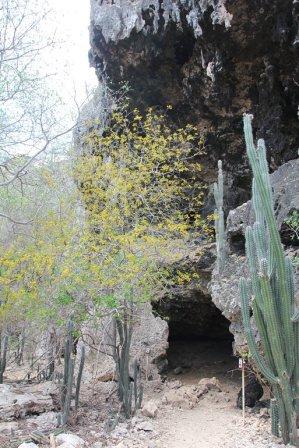 m_Hato Caves