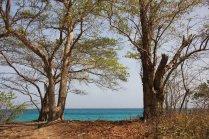 m_Playa de Cassajo W Coast