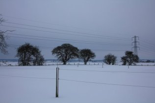m_Snow Feb 12