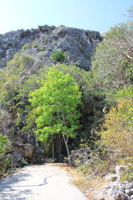 m_Grand Cave Bluff