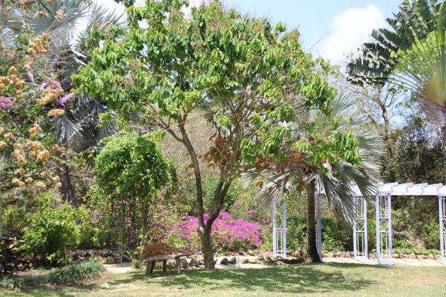 m_Botanical gardens4