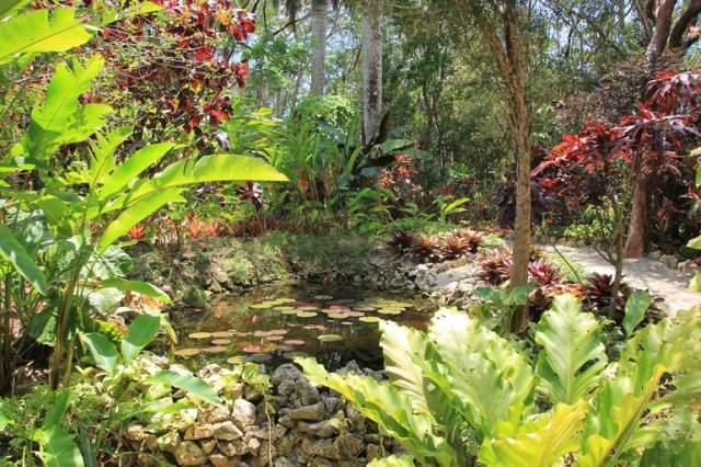 m_Botanical gardens5