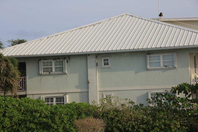 m_Iguanas on house
