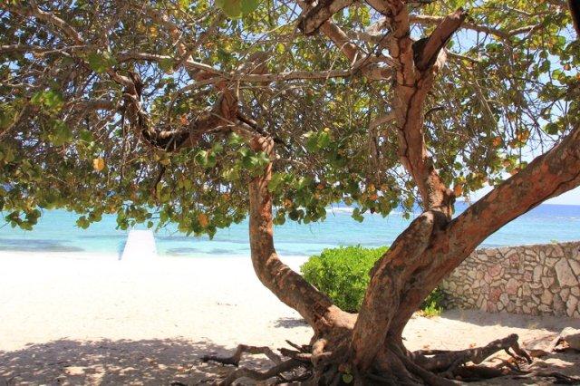 m_Spotts Beach3