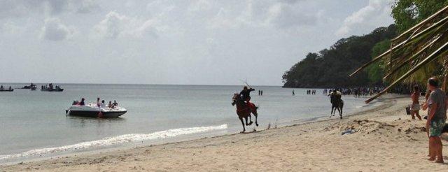 m_Horse Race3
