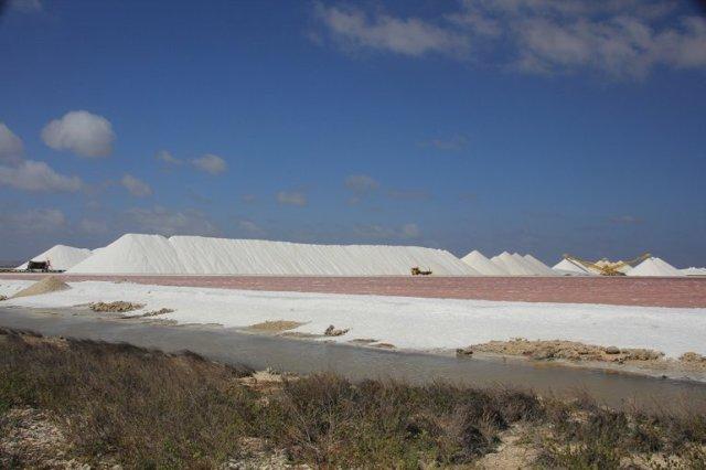 m_Salt works
