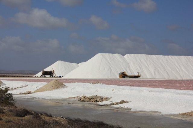 m_Salt works2