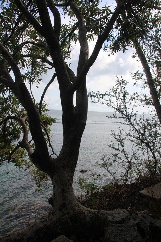 m_View from Santa Catalina3