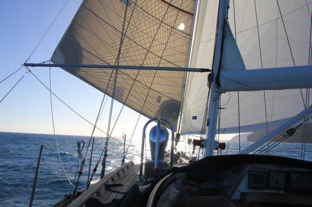 m_Sailing Fuerteventura