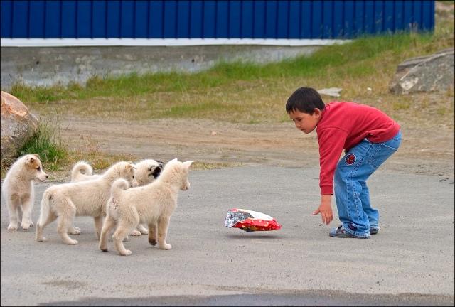 3348-boy-crisps-dogs
