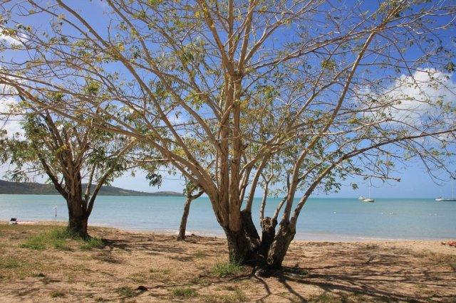 m_boqueron-beach3