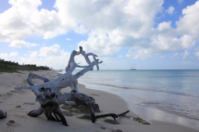m_Barbuda Beach