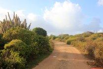 m_Barbuda inland2