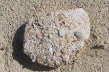 m_Barbuda shells