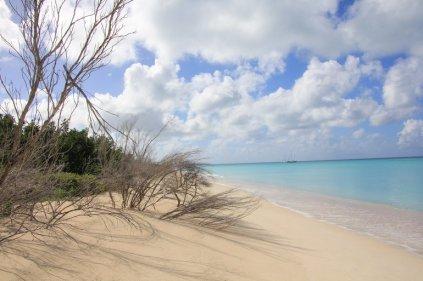 m_Barbuda West Coast