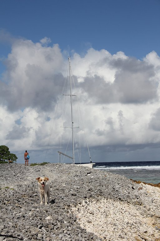 m_Fakarava stricken boat Jez and pooch