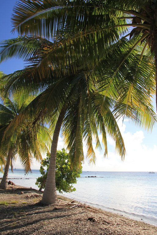m_Fakarava Tetamanu beach