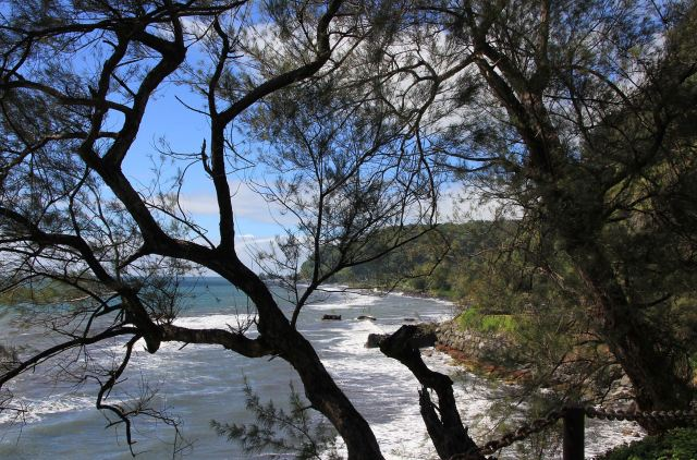 Tahiti East Coast 2-squashed