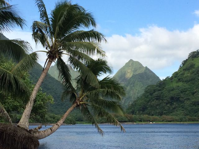 Tahiti Iti squashed